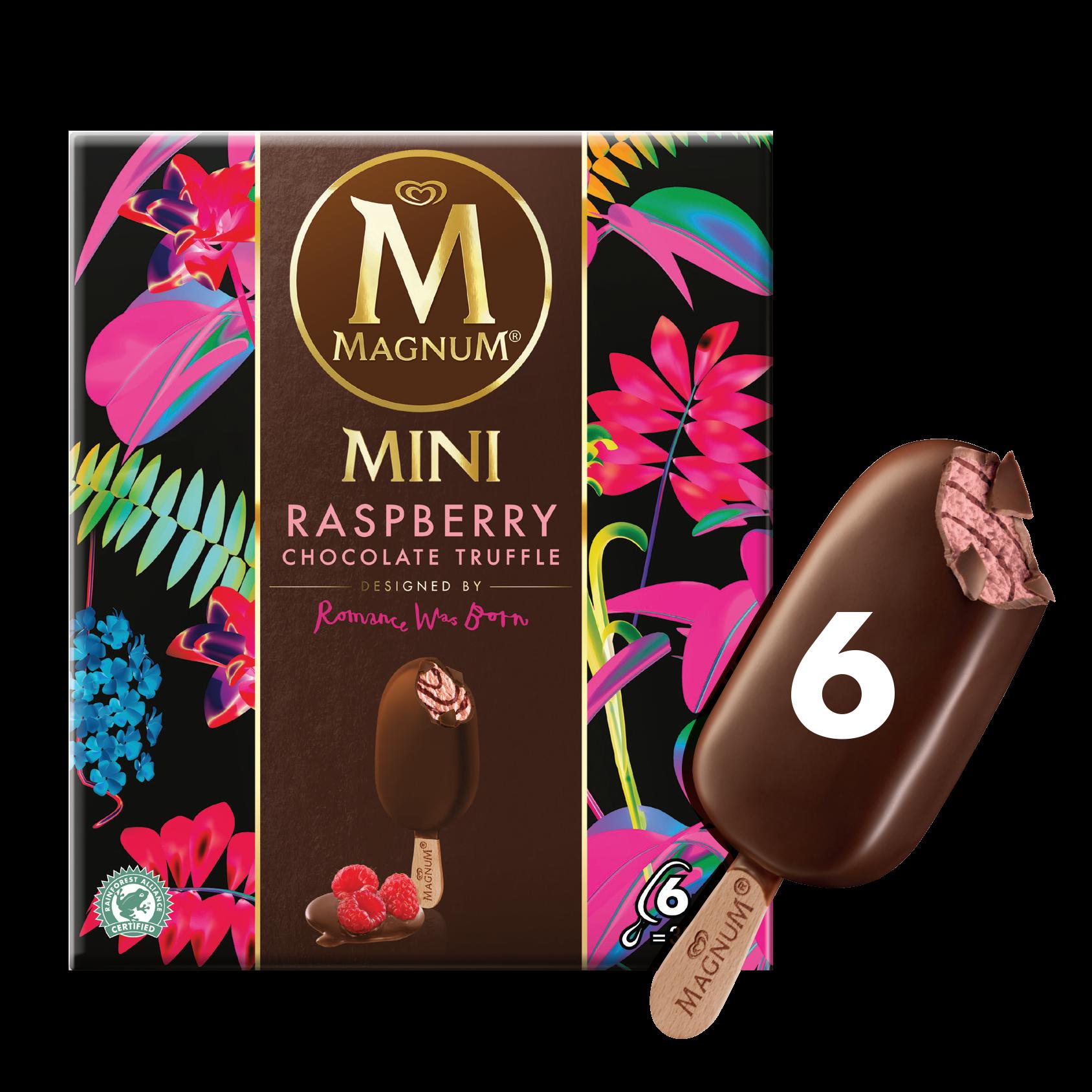 Chocolate Raspberry Truffle Ice Cream