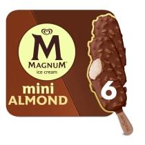 Mini Almond Ice Cream Bar | Magnum